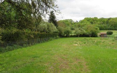 NOUVEAU : 3 terrains à bâtir à Chaintreauville